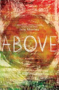 Buy *Above* by Isla Morley online