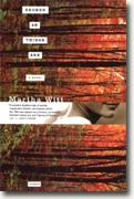 Buy *Broken as Things Are* by Martha Witt online