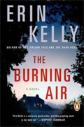 *The Burning Air* by Erin Kelly