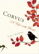 Buy *Corvus: A Life with Birds* by Esther Woolfson online