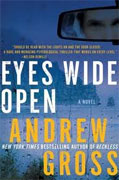 *Eyes Wide Open* by Andrew Gross