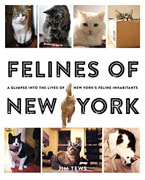 *Felines of New York: A Glimpse Into the Lives of New York's Feline Inhabitants * by Jim Tews