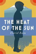 Buy *The Heat of the Sun* by David Rainonline