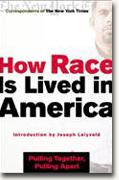 How Race is Lived in America bookcover