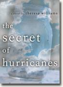 Buy *The Secret of Hurricanes* online