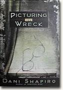 Picturing the Wreck bookcover