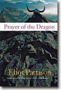 Buy *Prayer of the Dragon* by Eliot Pattison online