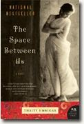 Buy *The Space Between Us* by Thrity Umrigar